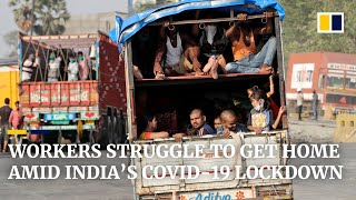 Coronavirus: India's migrant workers desperate to return home after lockdown