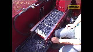 Bluberry & raspberry harvester KAREN