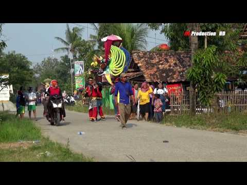 Buta Sanga - Polisi Live In Sumur Sapi