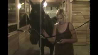 Stable Management Lesson 4 Vital Signs