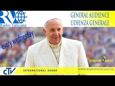 Pope Francis General Audience 2015.06.17