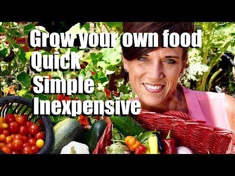 Grow Your Own Food - Quick, Simple, Inexpensive // Channel Trailer