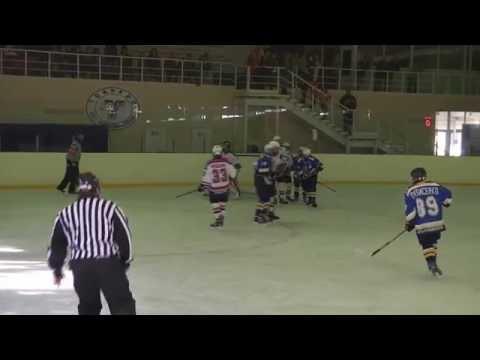 Первенство России по хоккею 2016. Торпедо - ЦЗВС 2002 Новосибирск 2 игра от 25.09.2016г