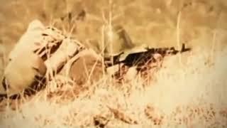 Афганская война (1979-1989)