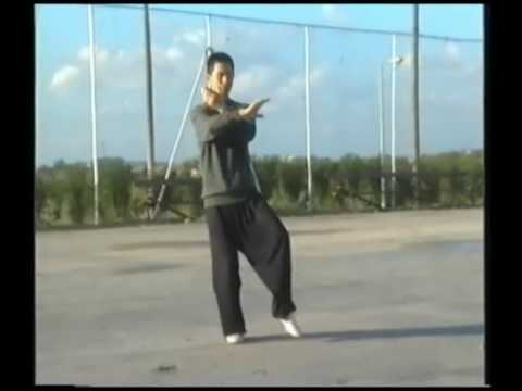 My first Tai chi teacher Liu Haihe.
