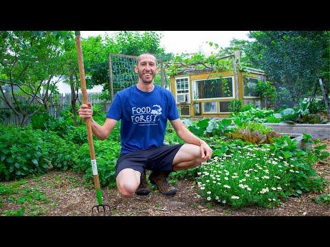 Full New Jersey Garden Tour, Organic Backyard Gardening