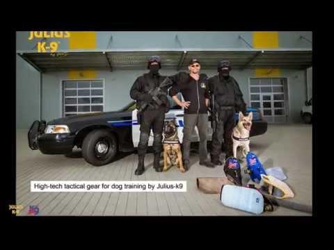 "New tactical IDC® Stealth harness / ""Stealth"" Geschirr"