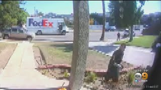 Caught On Camera: FedEx Driver Puts Out Fire At Eagle Rock Home