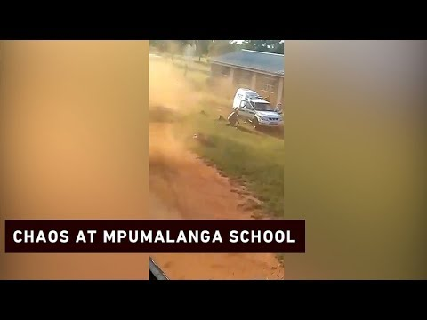 Police shoot former pupil after he attacks school and police with bricks