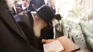 Rav Chaim Kaniefsky by the Kosel 5778 @aemyman הרב חיים קנייבסקי בכותל
