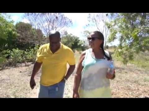 Gardens of Antigua: Camp Wangara