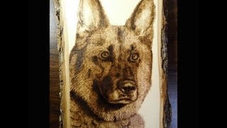 German Shepherd - Wood Burning - Fast-motion (24x)