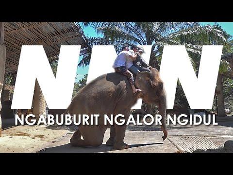 NNN - Tentang Bali Trip