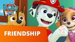PAW Patrol | Friendship Day | PAW Patrol Official & Friends