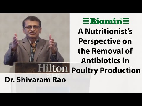A Nutritionist's Perspective on the Removal of Antibiotics in Poultry Production
