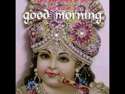 Good Morning    Have a nice day    Whatsapp video