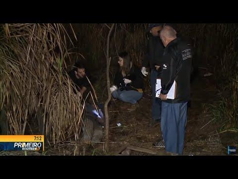 Corpo é encontrado em matagal no contorno norte de Curitiba - Primeiro Impacto PR (22/08/19)