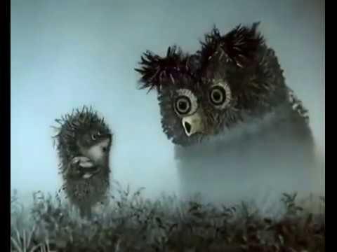 خارپشت در مه -   فارسی   hedgehog in the fog - Farsi thumbnail