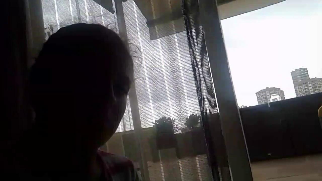 092c97994259 Mi periquito - YouTube