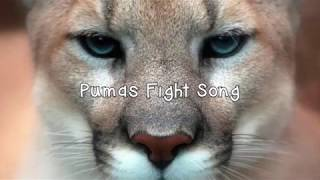 Puma Fight Song 2018