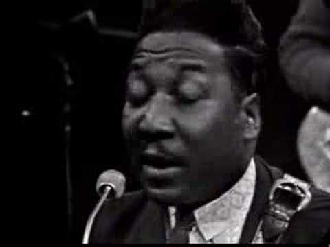 Muddy Waters - You Can't Loose What Your Never Had
