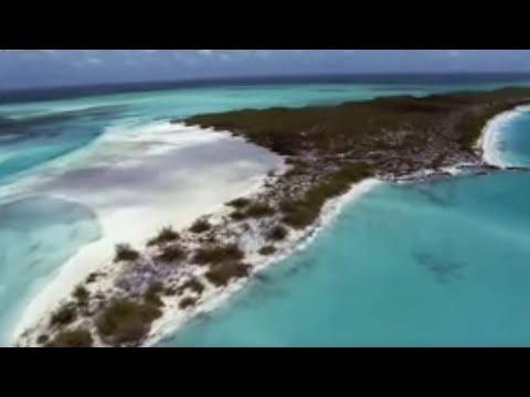 Bahamas: hurricane central - Wild Caribbean - BBC Nature