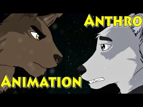 Anthro Wolf and Cat Furry Animation from YouTube · Duration:  2 minutes 27 seconds