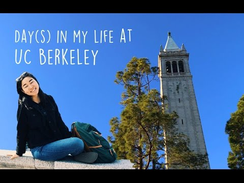 Day(s) in the Life of Beccs at Berkeley