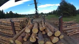 Разгрузка леса на пилораме Урал лесовоз Атлант С-90 От первого лица