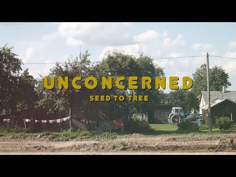 "Seed to Tree - ""Unconcerned"" (Official Video)"