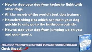 The Secrets To Dog Training By Daniel Stevens - The Secrets To Dog Training Book