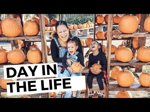 VLOG: A DAY IN THE LIFE WITH TODDLERS, FALL 2019, VLOGTOBER   THE DUNSTONS