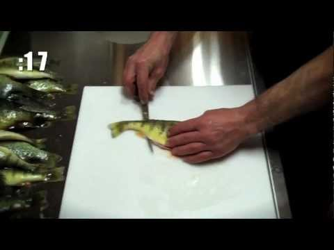 Fillet Perch in 45 SECONDS!!!