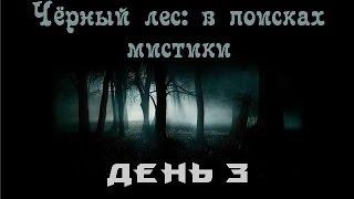 Черный лес: в поисках мистики. 3 день...bogomaz05