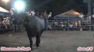 El Buffalo Revolco 2 Veces A El Perla De Atencingo En San Isidro El Organal 2012