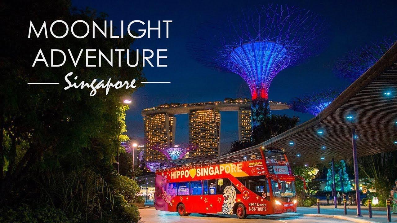 moonlight adventure singapore top night tours experience. Black Bedroom Furniture Sets. Home Design Ideas