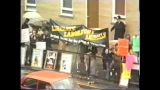 Скачать Animal Passions 1982