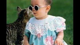 Смешные детки  Дети и кошки