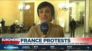 How are the French government planning on calming Yellow Vest protests?   Euronews Tonight