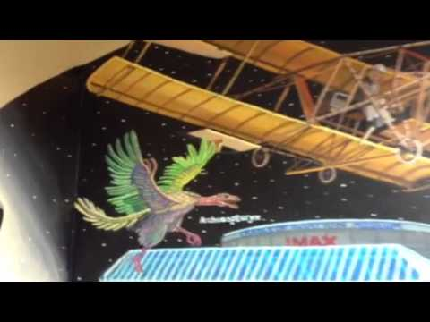 Mural of The Cradle Of Aviation IMAX Theatre for Mid-island Dental in Hicksville, New York