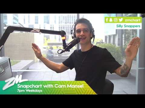 Brendon Urie from Panic! at the Disco chats to ZM's Snapchart