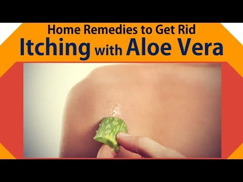 home-remedies-to-itching-|-get-rid-itching-with-aloe-vera,-cool-water