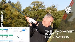 Golf - The Lead Wrist - Hack Motion