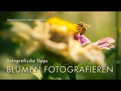 Fotografie Bearbeitung (Videomagazin) - Cover