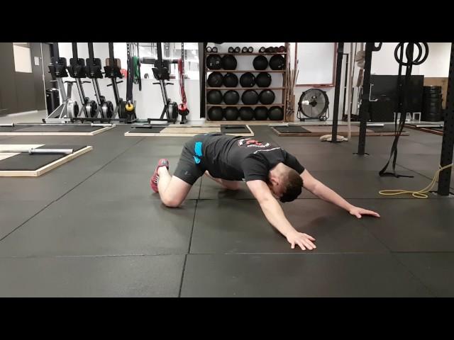 T-flexion