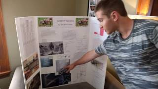 Video Science Fair project Insect Gears: part 2 download MP3, 3GP, MP4, WEBM, AVI, FLV April 2018