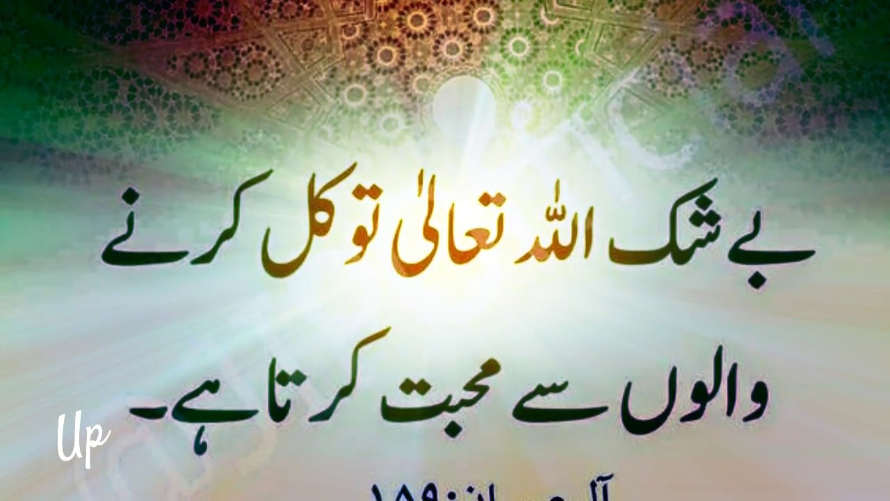 Quranic Quotes Collection In Urdu Youtube