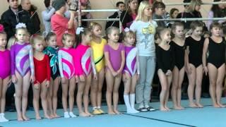ДЮСШ 1  г.Липецк 28 ноября 2015 г. Посвящение в юные гимнасты