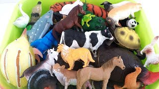 Learn Wild Zoo Animals and Farm Animals in Blue Water Shark Toys For Kids