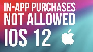 "FIX ""In-app purchases are not allowed"" iOS 12 